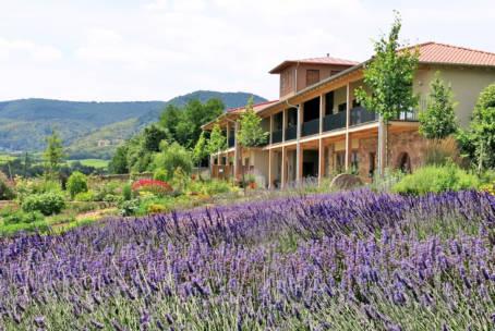 Lavendellust 15.-16. Juni 2019