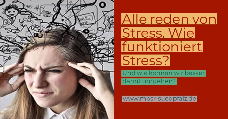 Alle_Reden_von_Stress.jpg