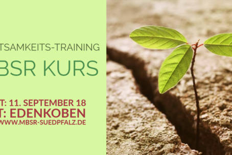Achtsamkeits-Training: MBSR Kurs